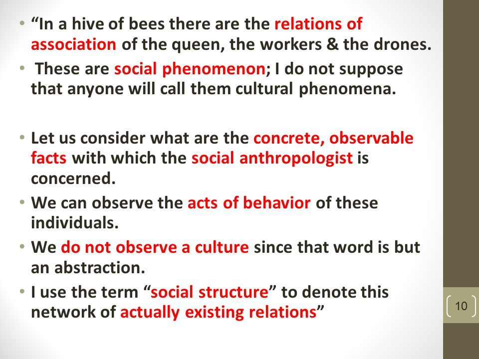 In a hive of bees there are the relations of association of the queen, the workers & the drones.