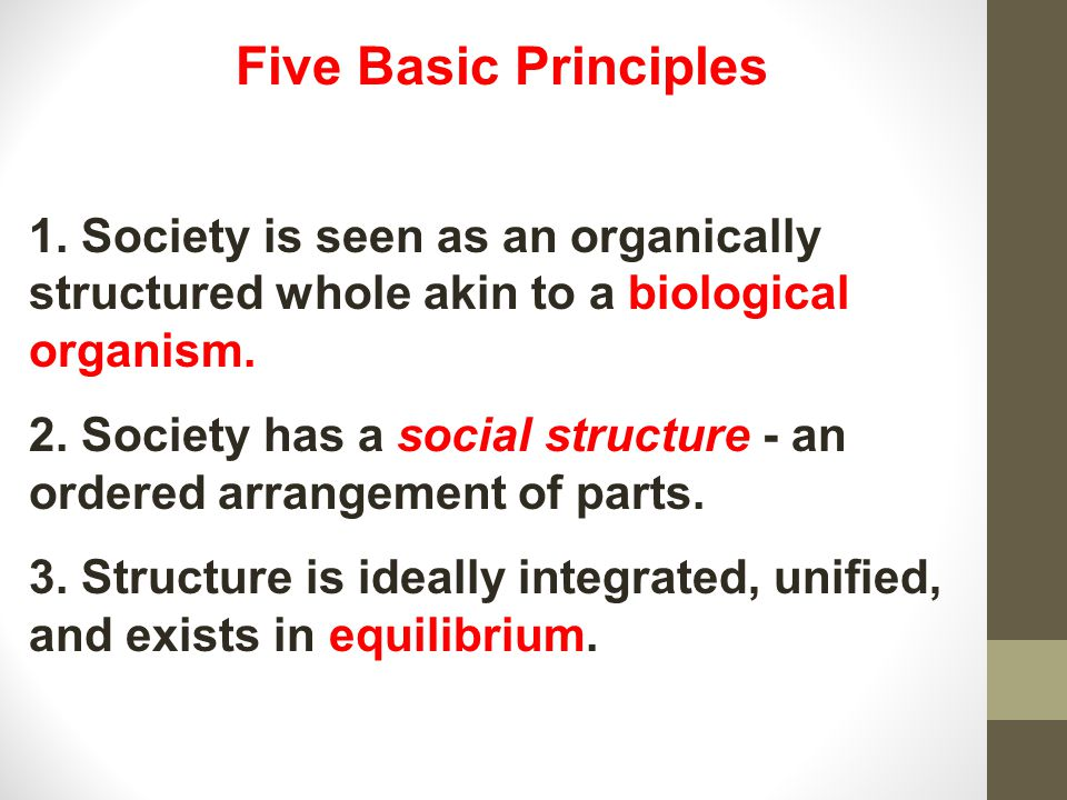 Five Basic Principles 1. Society is seen as an organically structured whole akin to a biological organism.