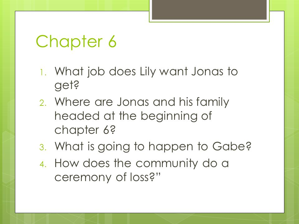 Chapter 6 What job does Lily want Jonas to get