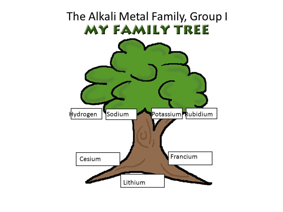 The Alkali Metal Family, Group I