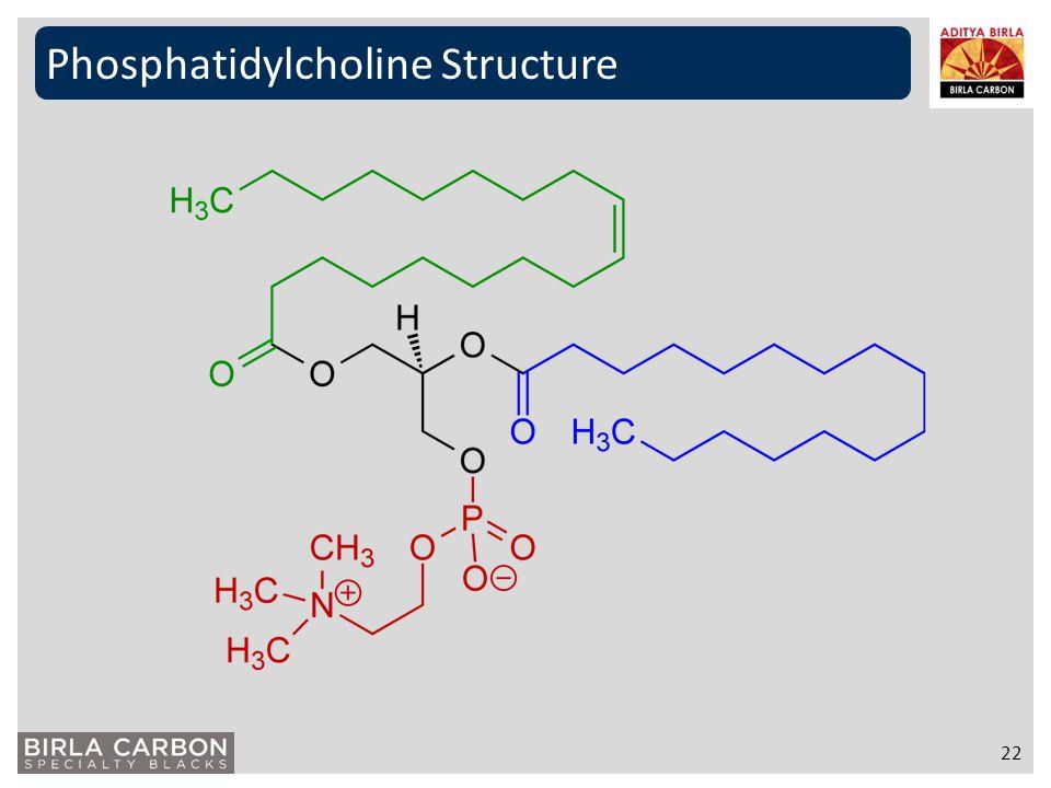 Phosphatidylcholine Structure