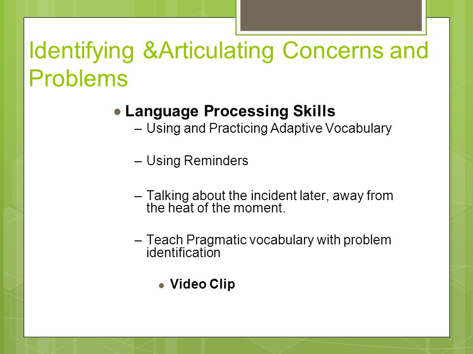 Identifying &Articulating Concerns and Problems