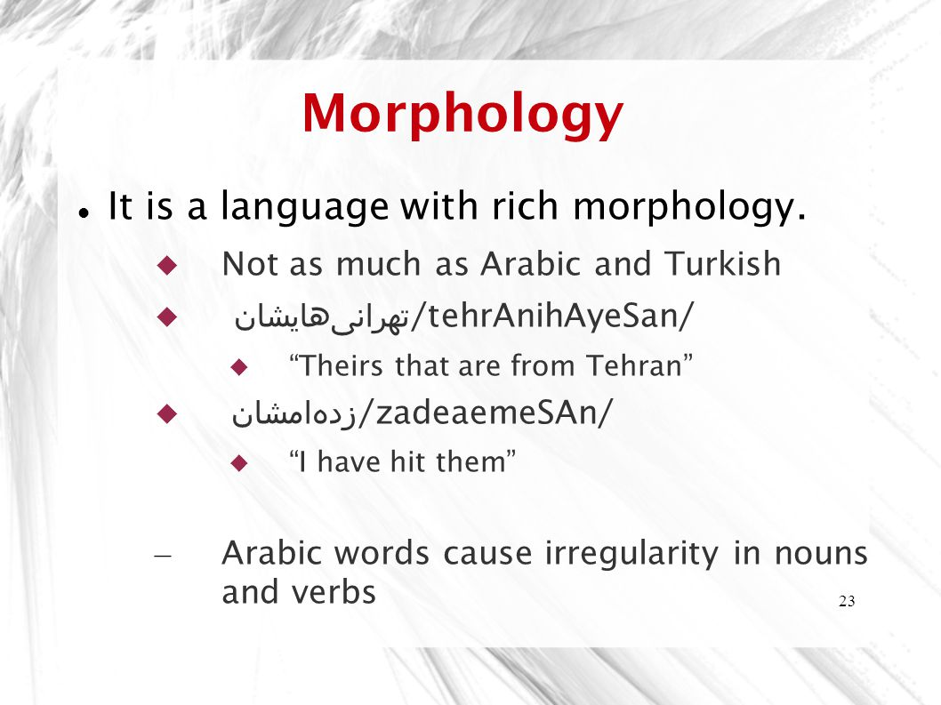 Morphology It is a language with rich morphology.