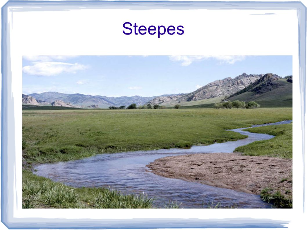 Steepes
