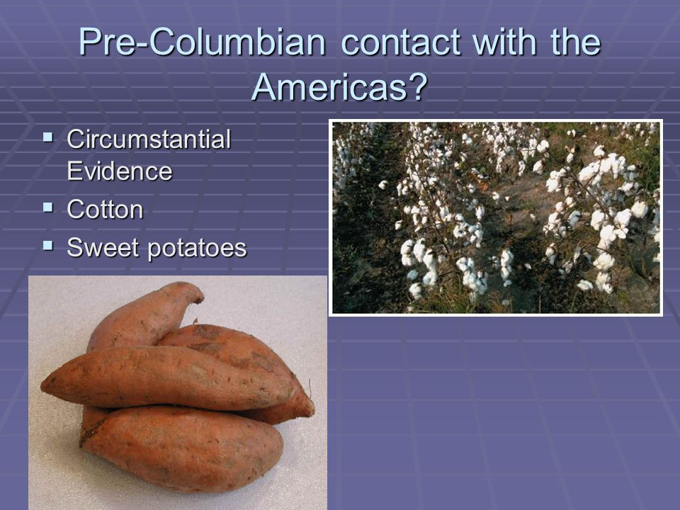Pre-Columbian contact with the Americas