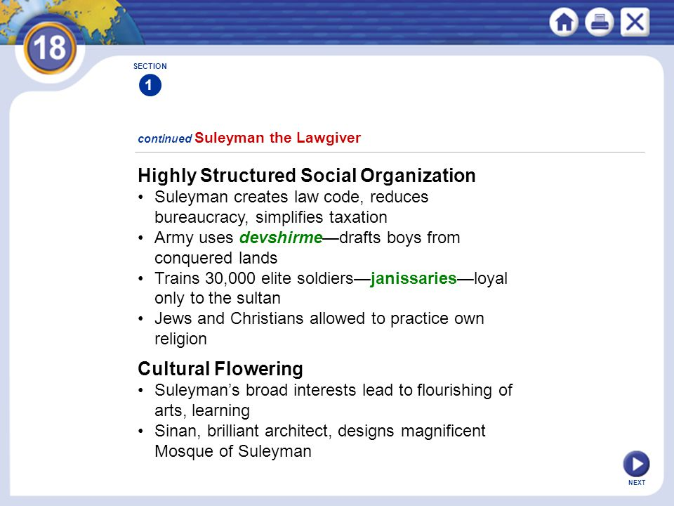 Highly Structured Social Organization