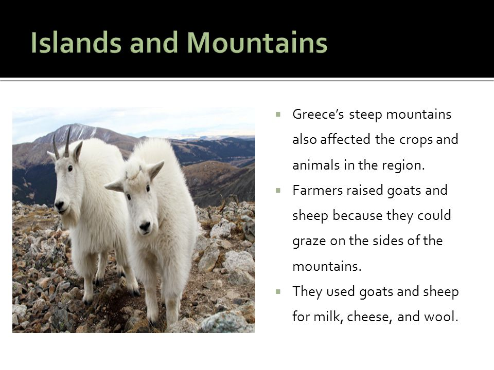 Islands and Mountains Greece's steep mountains also affected the crops and animals in the region.