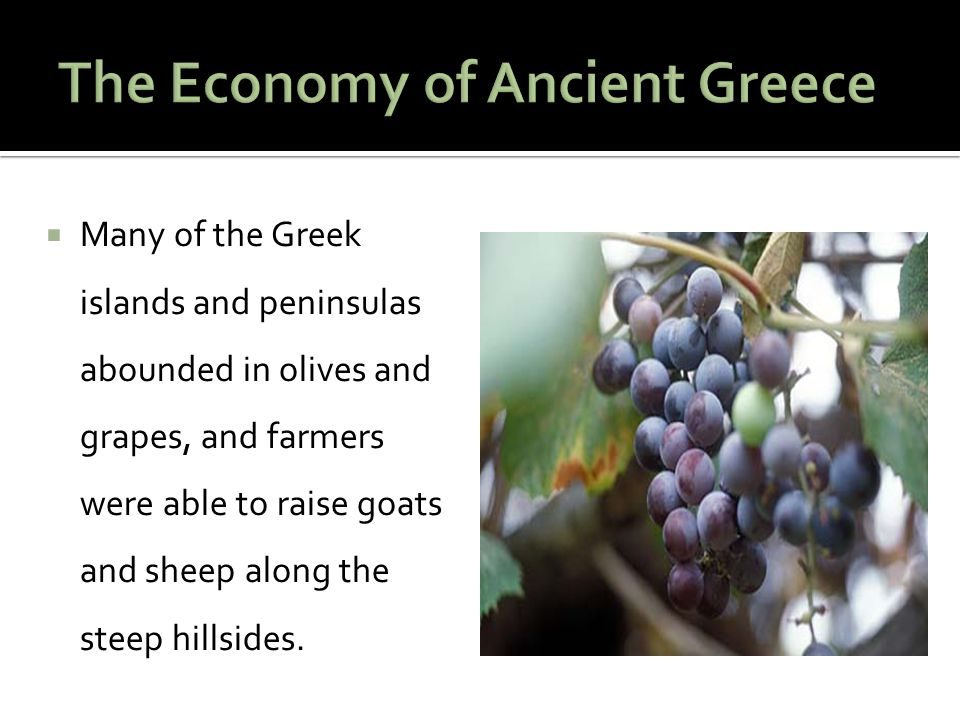 The Economy of Ancient Greece