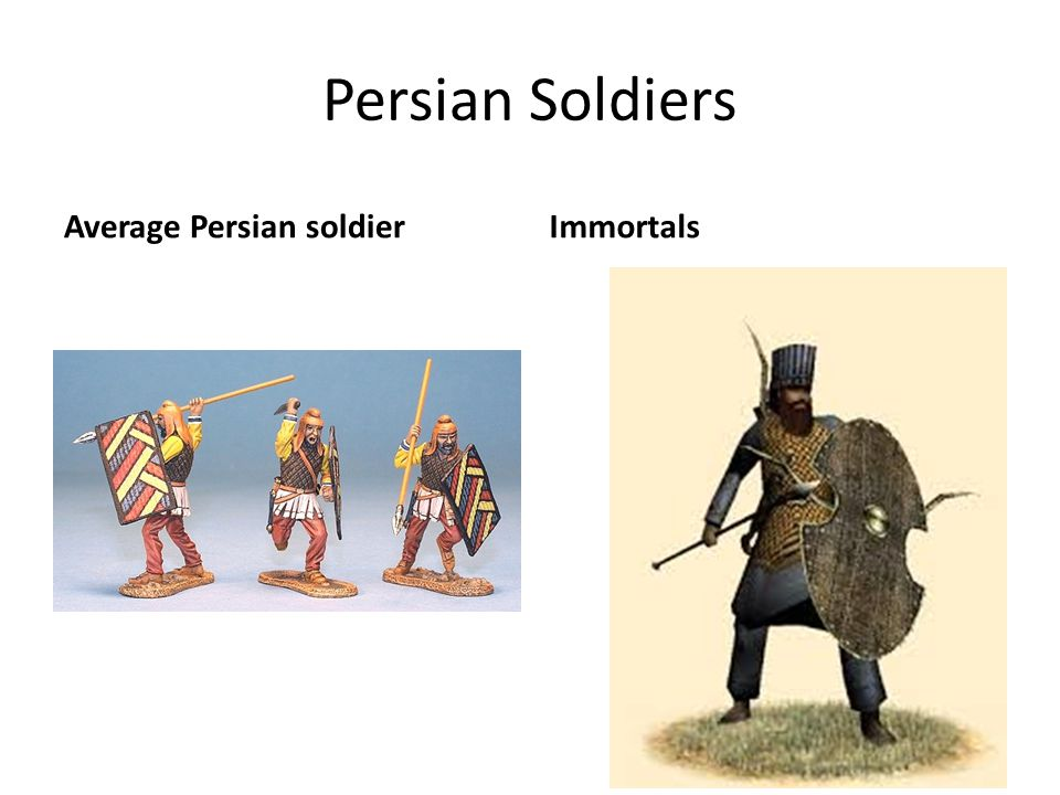 Persian Soldiers Average Persian soldier Immortals