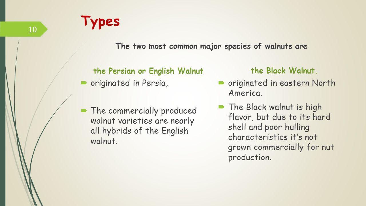 Types originated in Persia, originated in eastern North America.