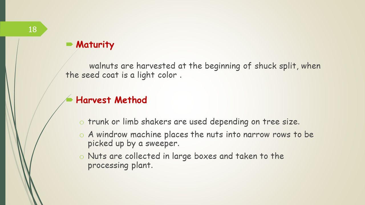 Maturity Harvest Method
