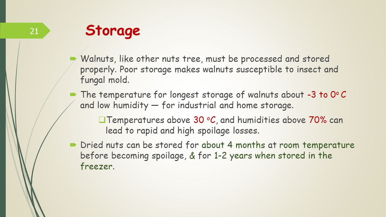 Storage Walnuts, like other nuts tree, must be processed and stored properly. Poor storage makes walnuts susceptible to insect and fungal mold.