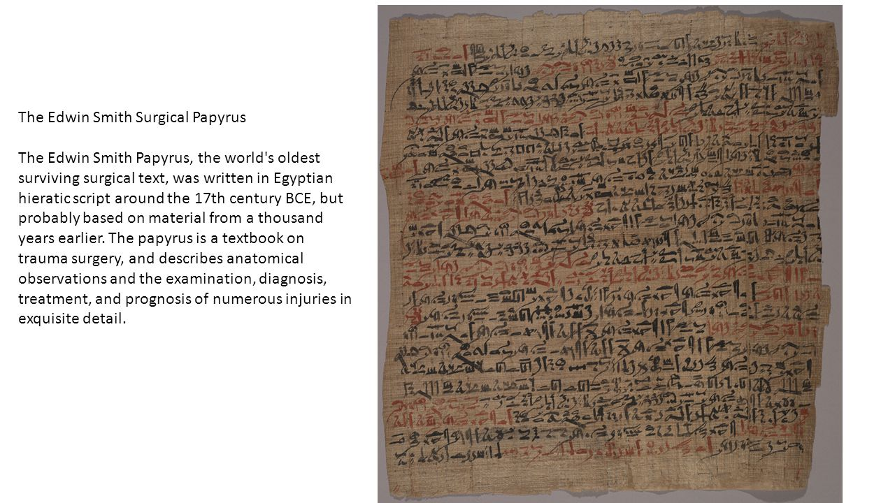 The Edwin Smith Surgical Papyrus