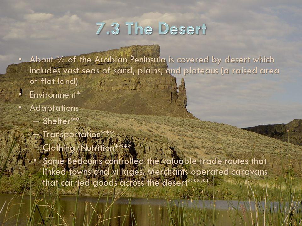 7.3 The Desert
