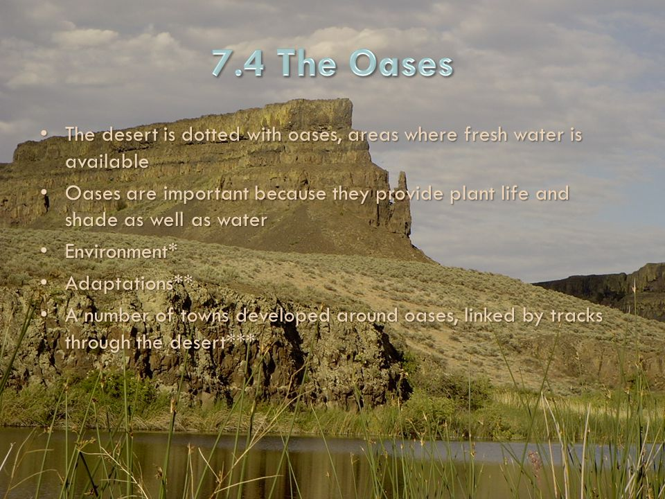 7.4 The Oases The desert is dotted with oases, areas where fresh water is available.