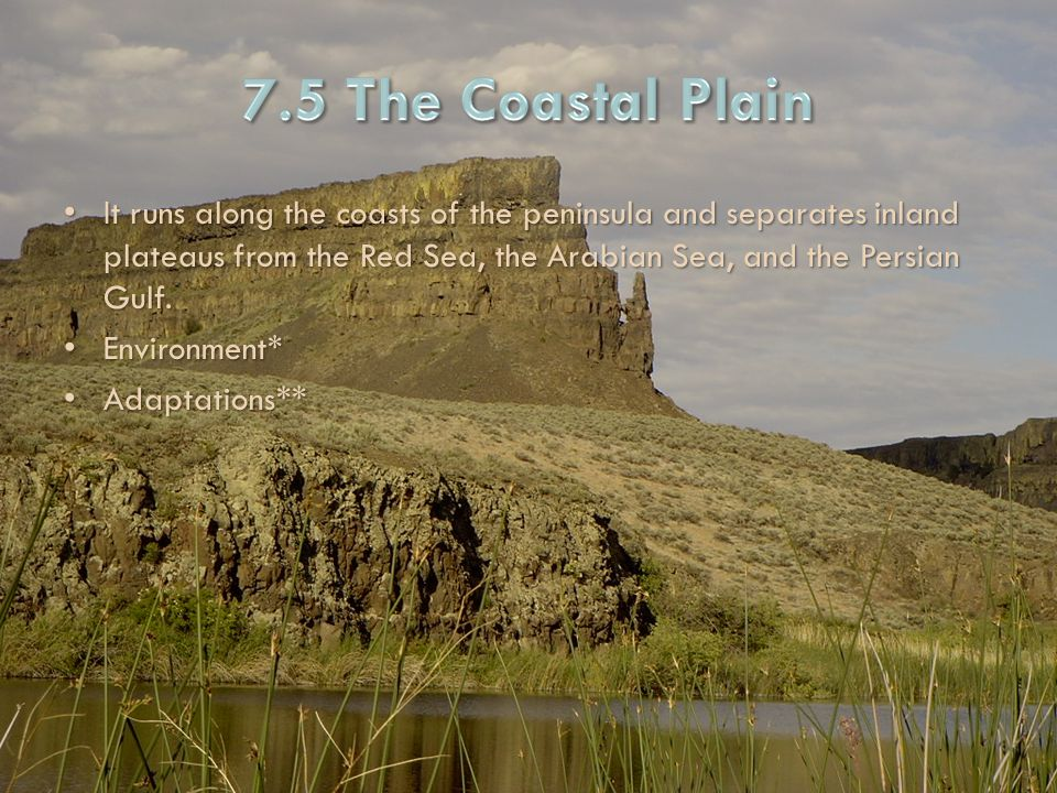 7.5 The Coastal Plain