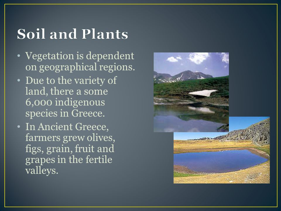 Soil and Plants Vegetation is dependent on geographical regions.