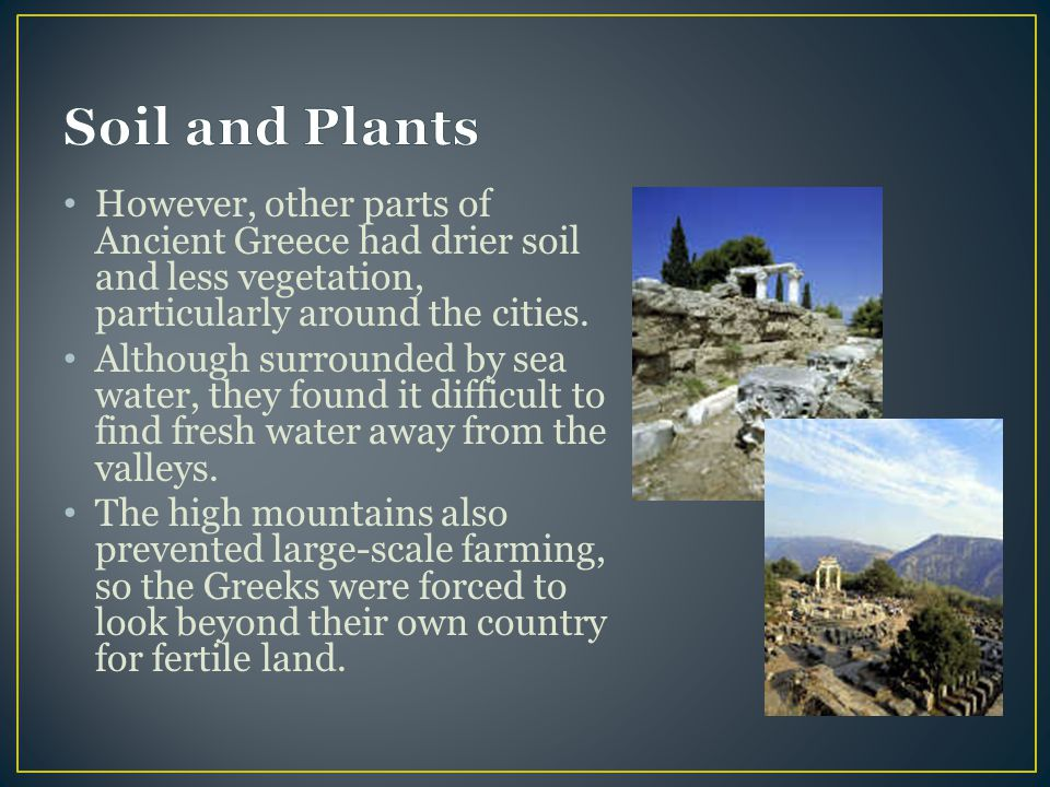 Soil and Plants However, other parts of Ancient Greece had drier soil and less vegetation, particularly around the cities.