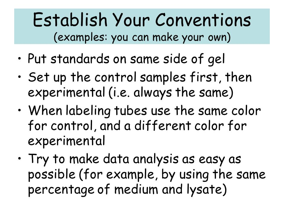 Establish Your Conventions (examples: you can make your own)