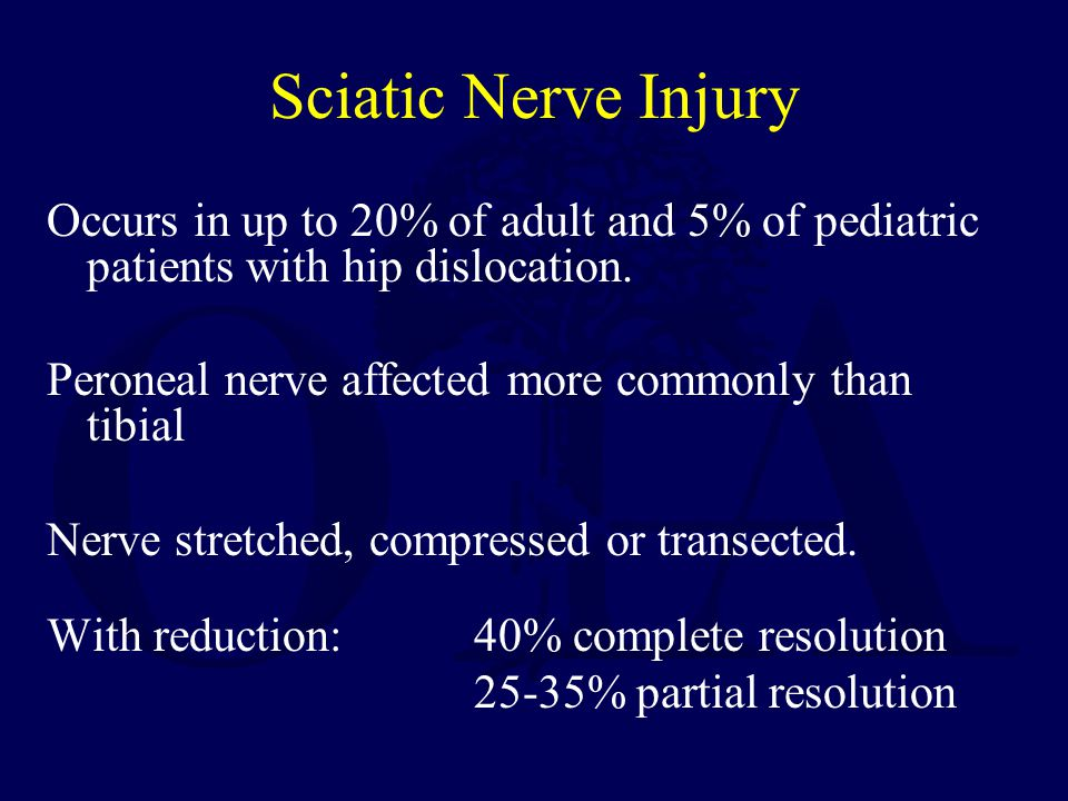Sciatic Nerve Injury Occurs in up to 20% of adult and 5% of pediatric patients with hip dislocation.