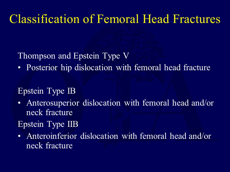 Classification of Femoral Head Fractures
