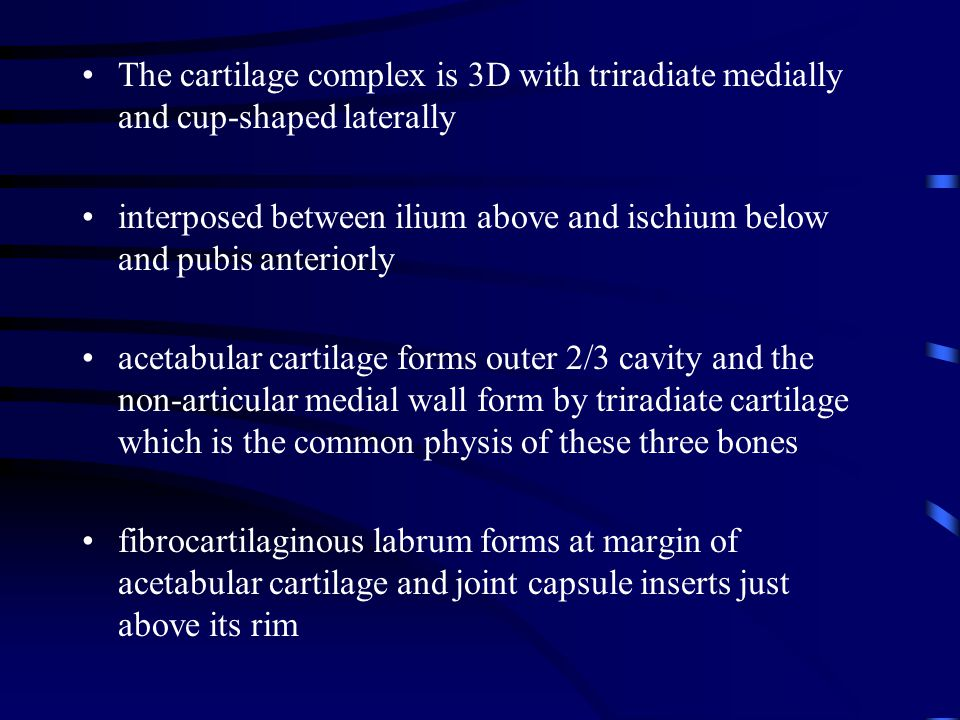 The cartilage complex is 3D with triradiate medially and cup-shaped laterally
