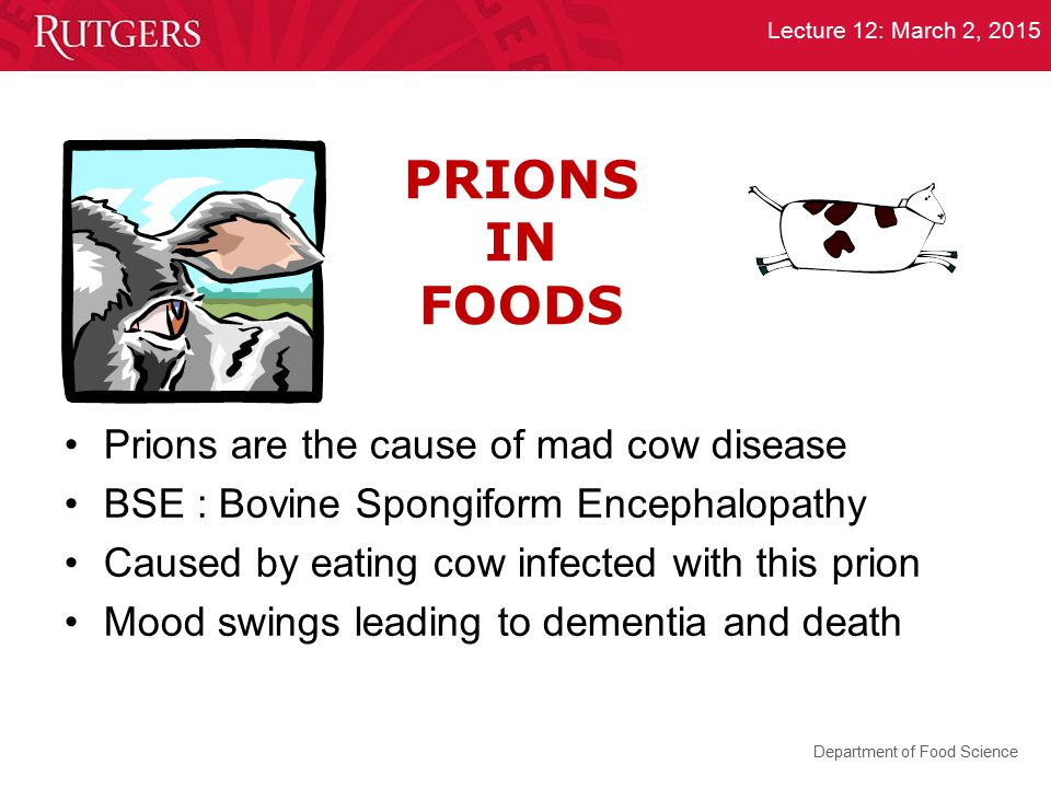 PRIONS IN FOODS Prions are the cause of mad cow disease