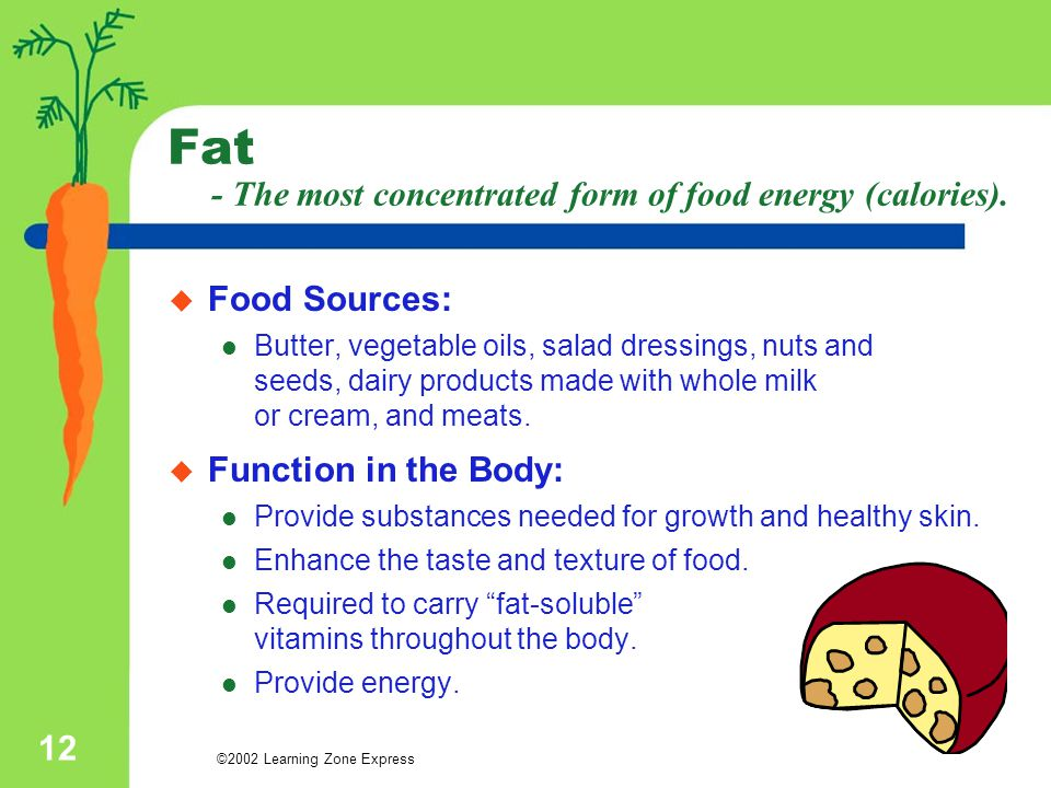 Fat - The most concentrated form of food energy (calories).