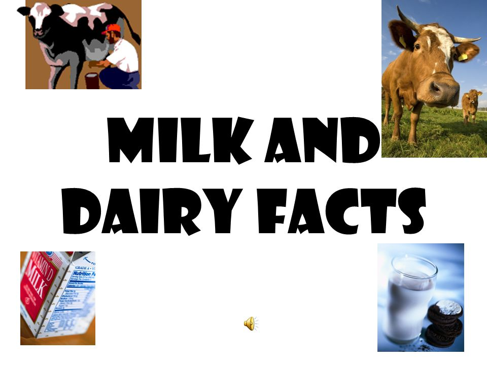 Milk and Dairy Facts 1