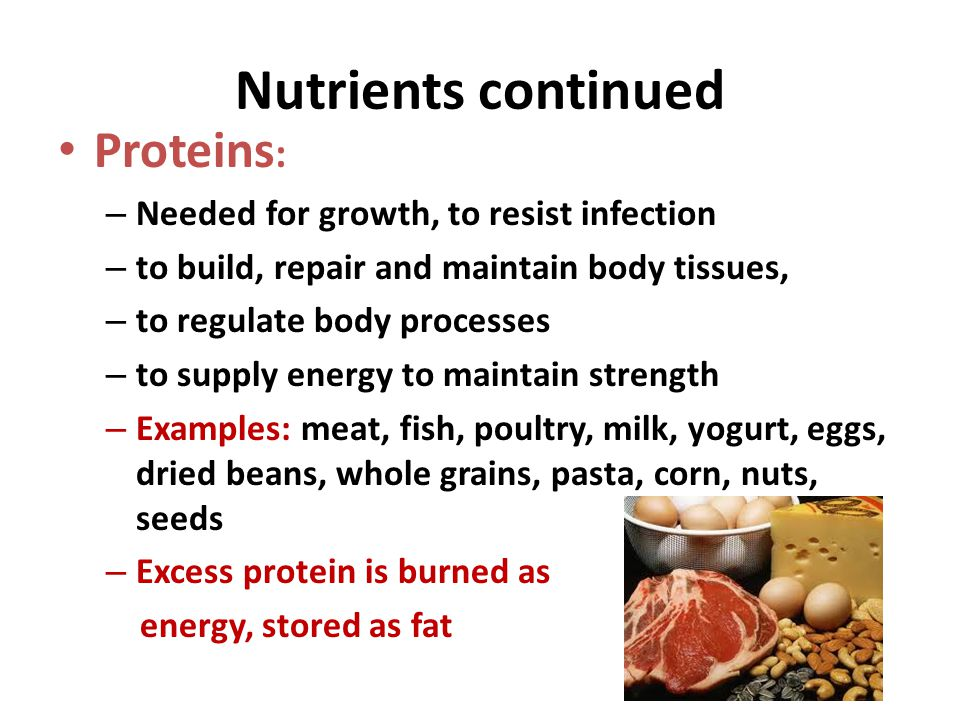 Nutrients continued Proteins: Needed for growth, to resist infection