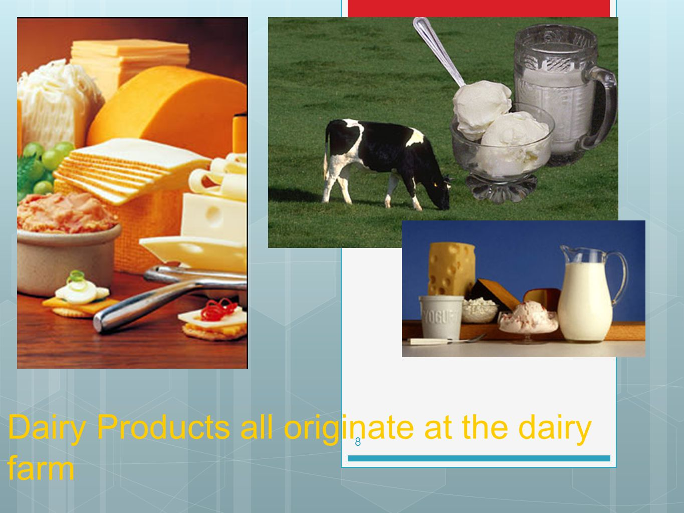 Dairy Products all originate at the dairy farm