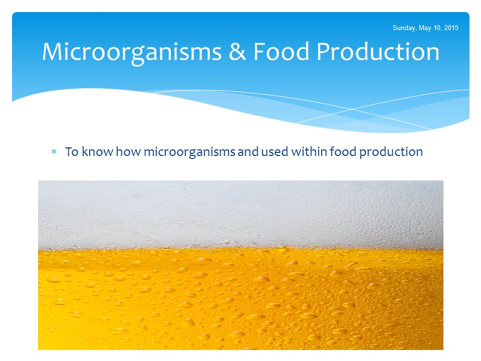 Microorganisms & Food Production