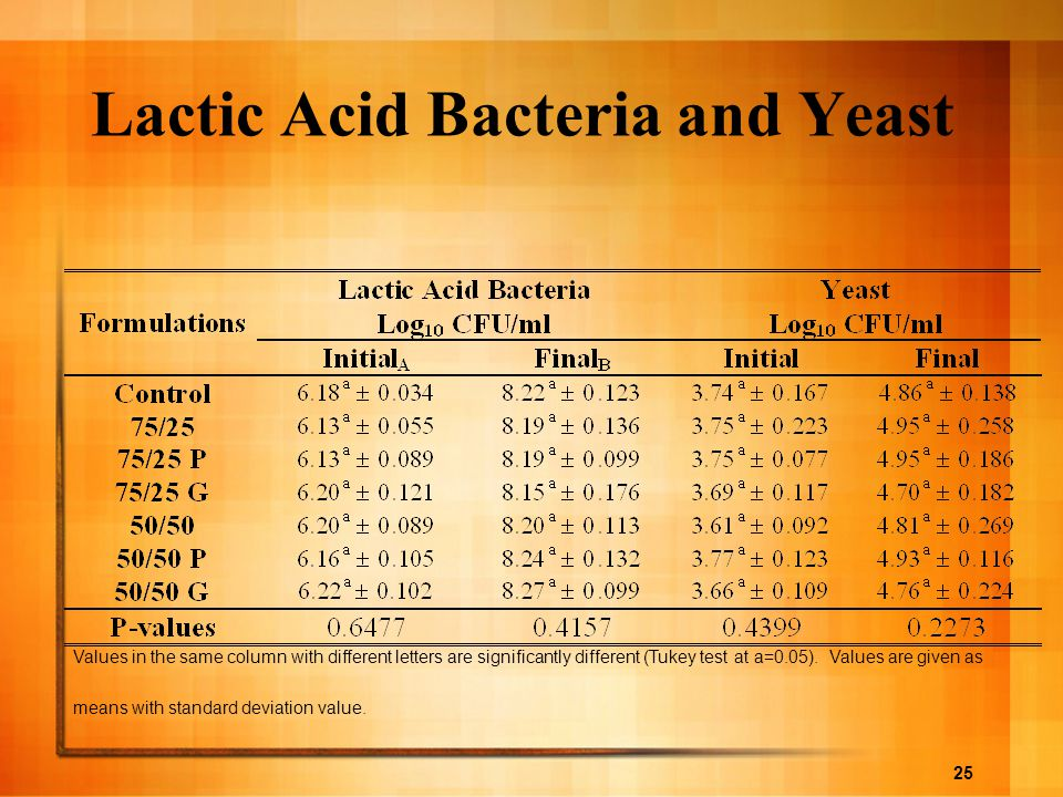 Lactic Acid Bacteria and Yeast