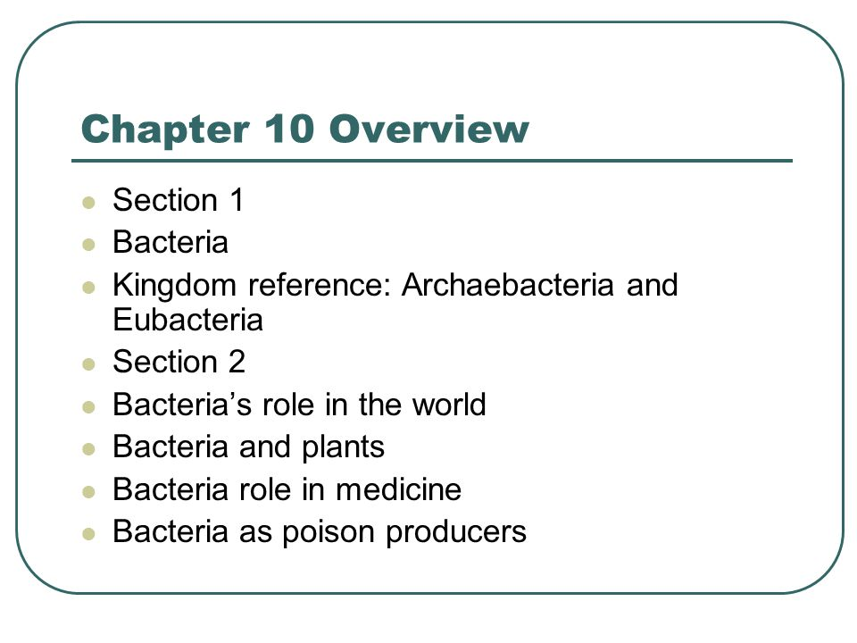 Chapter 10 Overview Section 1 Bacteria