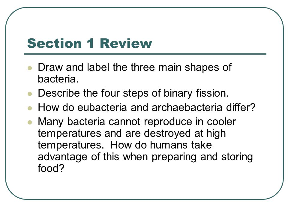 Section 1 Review Draw and label the three main shapes of bacteria.