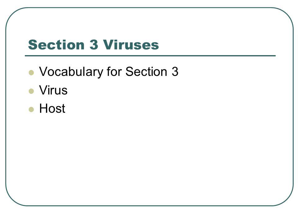 Section 3 Viruses Vocabulary for Section 3 Virus Host