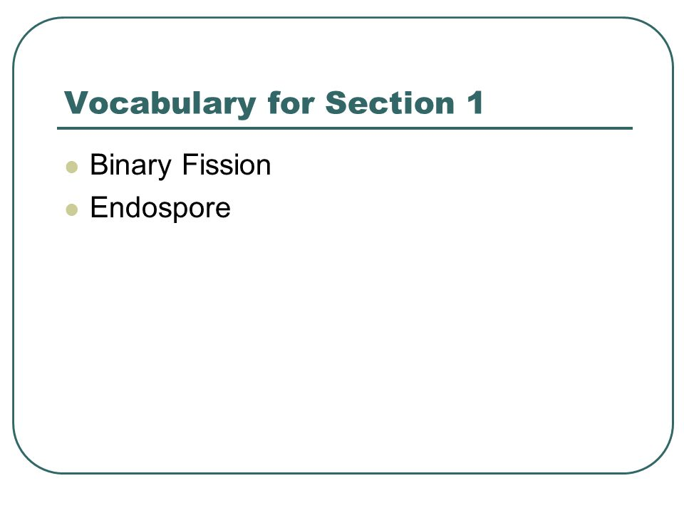 Vocabulary for Section 1
