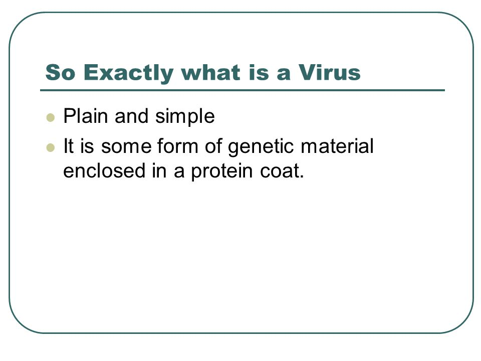 So Exactly what is a Virus