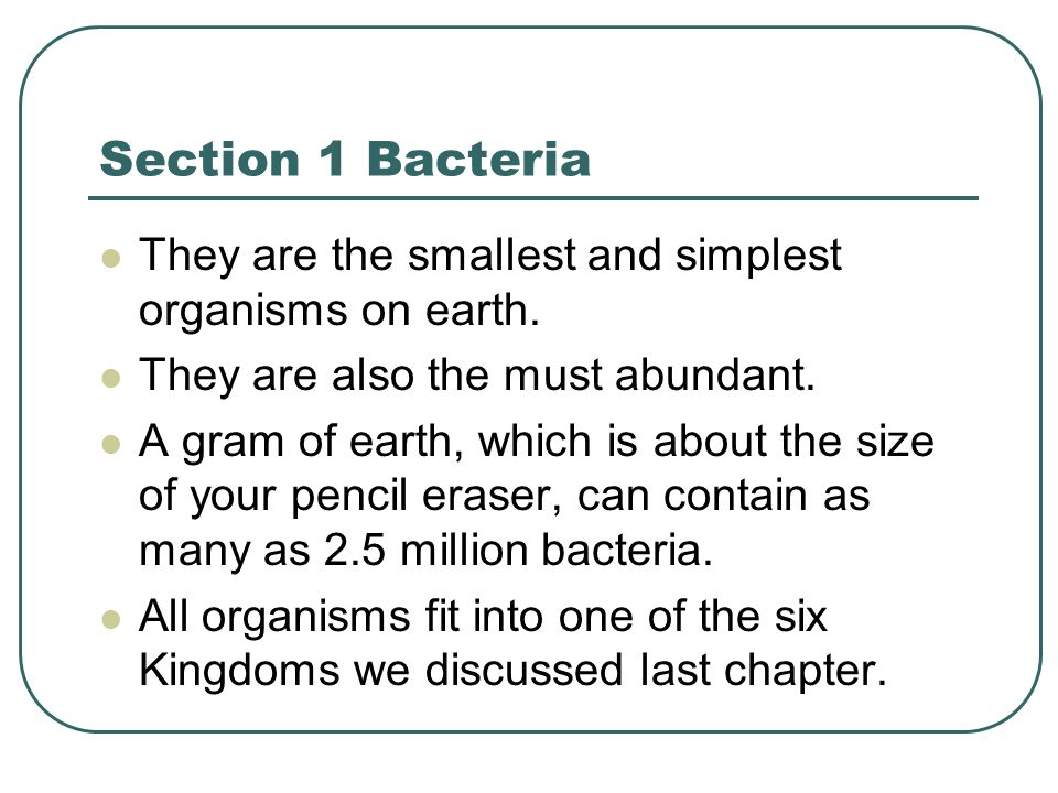 Section 1 Bacteria They are the smallest and simplest organisms on earth. They are also the must abundant.