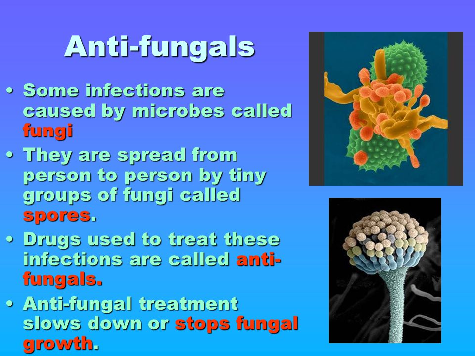 Anti-fungals Some infections are caused by microbes called fungi
