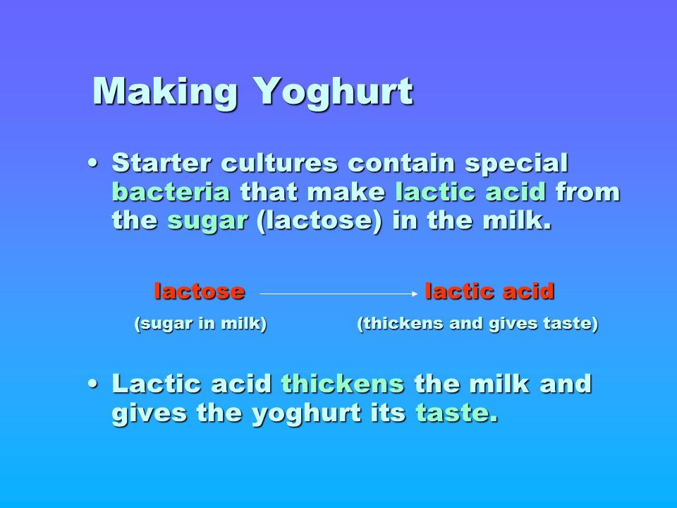 Making Yoghurt Starter cultures contain special bacteria that make lactic acid from the sugar (lactose) in the milk.