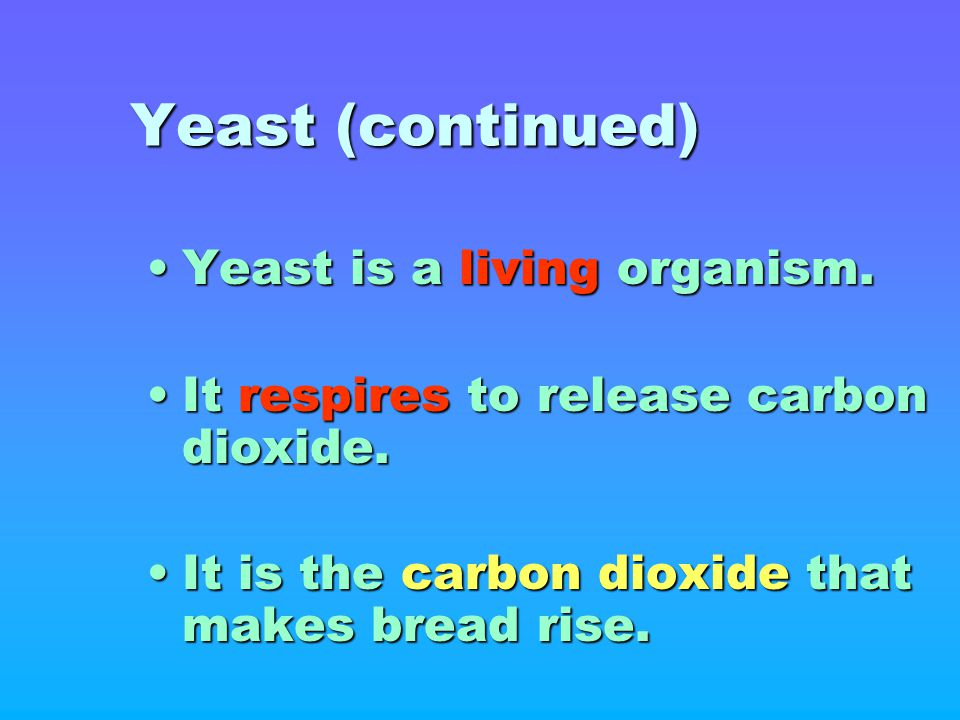 Yeast (continued) Yeast is a living organism.