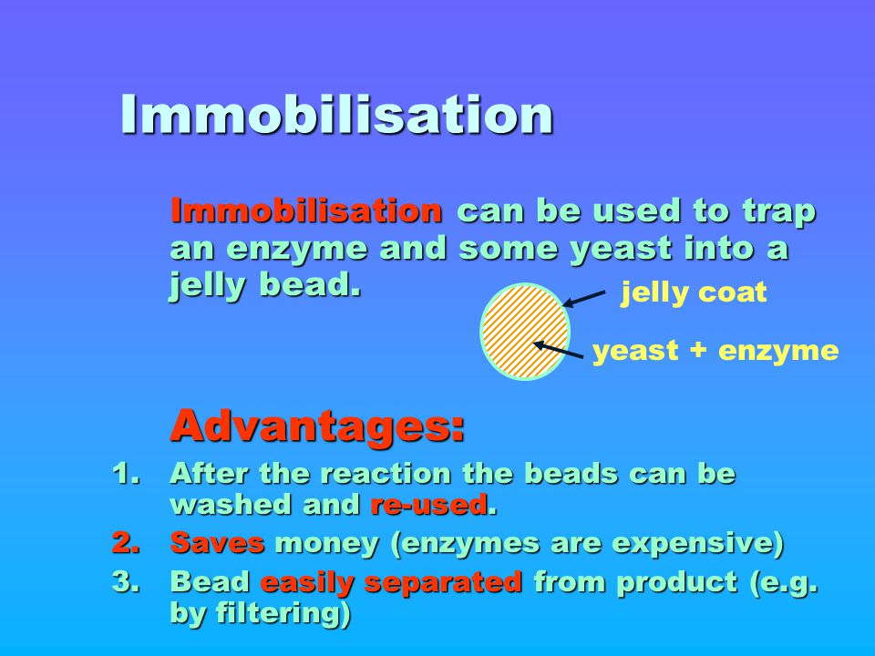 Immobilisation Immobilisation can be used to trap an enzyme and some yeast into a jelly bead. Advantages: