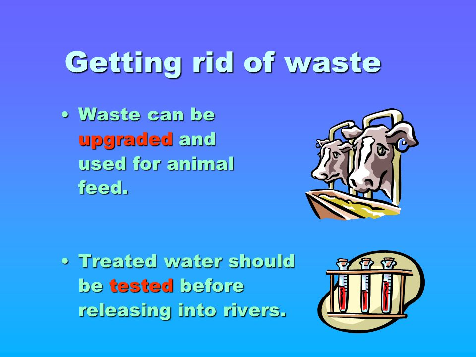 Getting rid of waste Waste can be upgraded and used for animal feed.