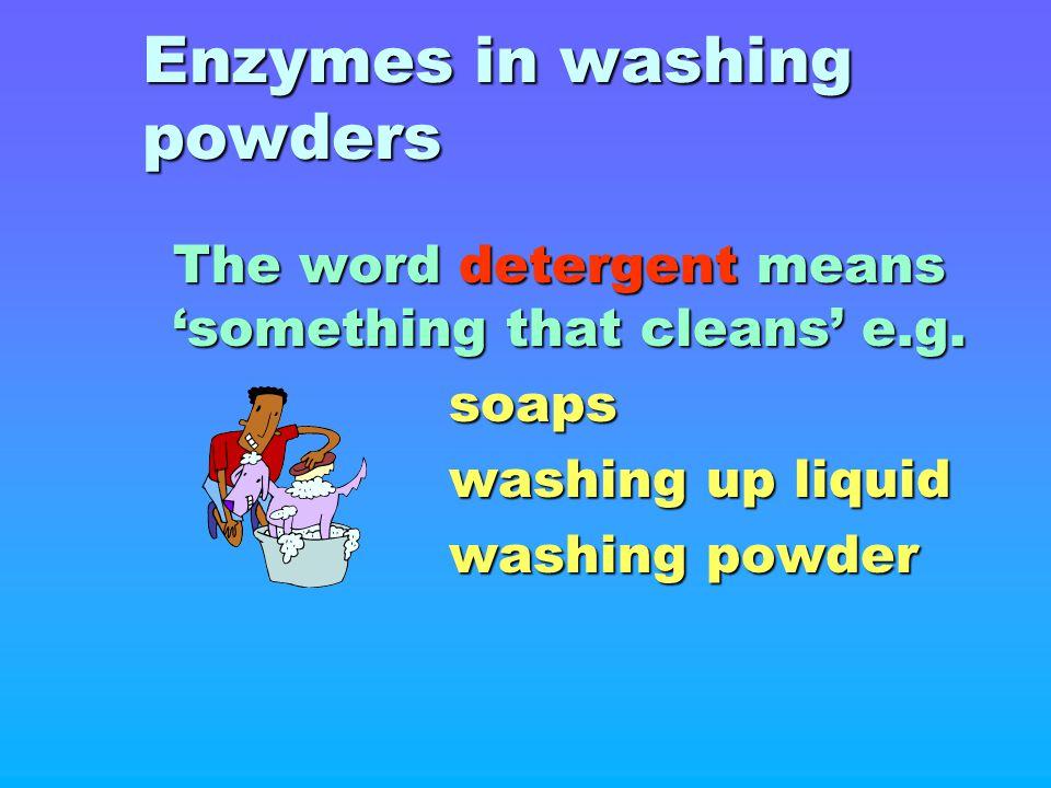 Enzymes in washing powders