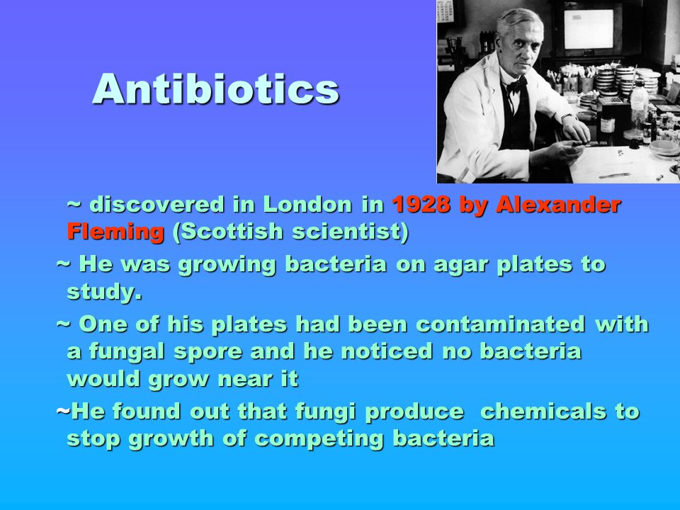 Antibiotics ~ discovered in London in 1928 by Alexander Fleming (Scottish scientist) ~ He was growing bacteria on agar plates to study.