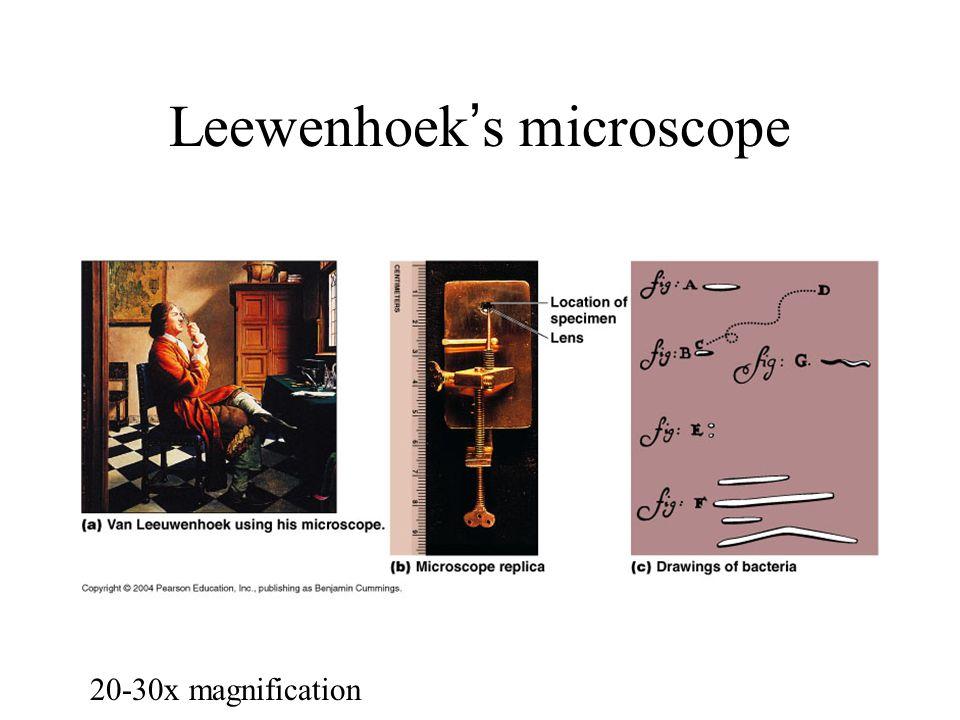 Leewenhoek's microscope