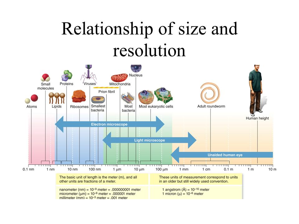 Relationship of size and resolution