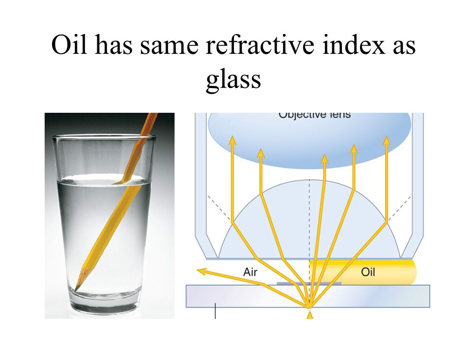 Oil has same refractive index as glass