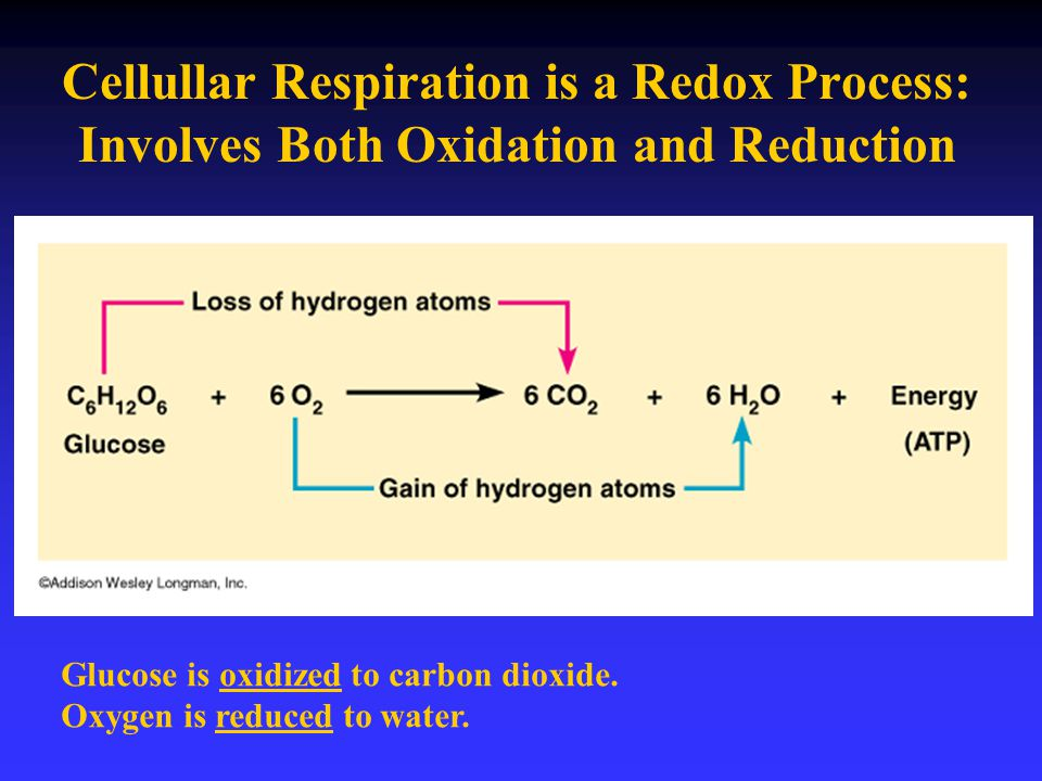 Cellullar Respiration is a Redox Process: Involves Both Oxidation and Reduction